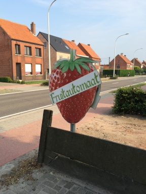 Strawberry vending machines in Belgium